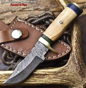 Handmade Damascus Steel Blade Miniature Knife   OLIVE WOOD