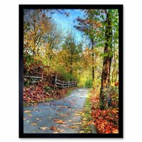 Nature Landscape Cultural Forest Path Road Tree 12X16 Inch Framed Art Print