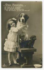 1911 Dogs  Saint Bernard  Pinscher Dachshund RPPC 7252/3 dog PC