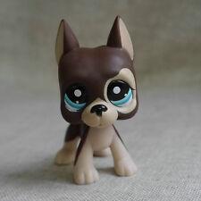 Brown Great Dane pubby dog LITTLEST PET SHOP LPS mini Action Figures #