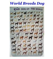 Dog Of The World Poster Ultimate Breed Educate Child Learning Home Decor