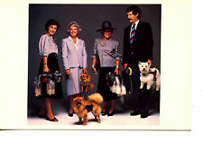 People Hold Dogs in Pet Carrier-Funny Patented Doggie Bag-Modern Postcard