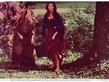 Lobby Card 1967 MORE THAN MIRACLE Sophia Loren