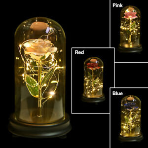 WR 24K Gold Dipped Real Rose In Glass Dome Beauty and Beast Enchanted Rose Gifts