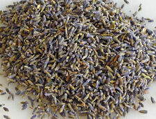 Dried lavender very strong fragrance highly aromatic