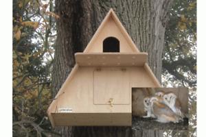 Barn Owl AHD Camera Nest Box | Assembled Large Wooden Garden Owls Birds 1080p UK