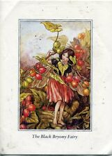 PAPER TOLE KIT - 3D DECOUPAGE - THE BLACK BRYONY FAIRY and THE ACORN FAIRY