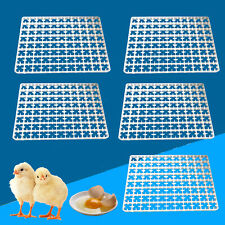 5pc 88x Egg Incubator Tray Chicken Duck Tray Egg Hatcher Storage Egg Container