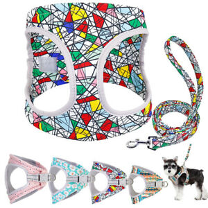 Soft Mesh Dog Harness Soft Padded Reflective Small Dog Walking Vest with Leash