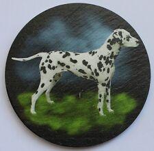 Dalmatian -  Dog - Coaster - Welsh Slate