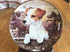 JACK RUSSELL DOG PLATE - ON THE FENCE - MANDIE HAYWOOD - DANBURY MINT