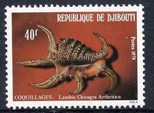 TIMBRE REPUBLIQUE DE DJIBOUTI N° 513 ** FAUNE MARINE COQUILLAGE