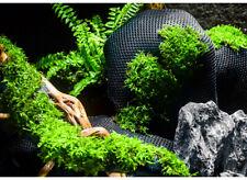Vivarium Terrarium Aquarium Plant Growth Fabric Self-Watering Moss Wall Hydrolon