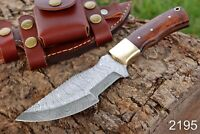 HAND FORGED DAMASCUS STEEL Hunting Tracker Knife W/ Wood & Brass Handle +sheath