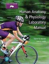 Human Anatomy & Physiology : Fetal Pig Version, Paperback by Marieb, Elaine N...