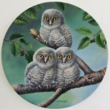 Knowles Out on a Limb Great Gray Owls Plate Joe Thornbrugh Baby Owls #5 Usa
