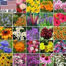 Northeast Wildflower - 300 Seeds - Mix 25 Species of Wildflower Seeds Usa!
