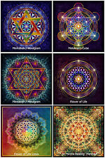 6x flor de la vida metatrons Cube Sri yantra mandala hexagram Lotus sticker