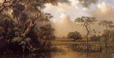 "Beautiful Oil painting Martin Johnson Heade - The Great Florida Marsh canvas 36"""