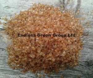 Hide Glue / Pearl - Traditional Luthier Glue For Wood Cloth & Leather 100g