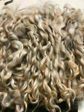 Angora Goat, Wool Curls for Doll Hair, Spinning, Needle Felting, Felting Supplie
