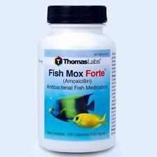 Fish Mox Forte 500Mg 100 Capsules Into Aquarium Water by Thomas Labs Exp 6/2020