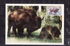 carte  1er jour   faune le bison  Mouzon      1974