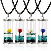 Wishing Bottle Glass Pendant Natural Dried Flower Daisy Necklace Women Jewellery