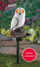 Solar Powered White Hooting Owl w/ Lighted Eyes Garden Stake KEEPS CRITTERS AWAY