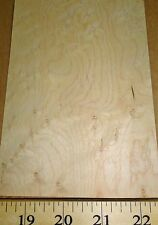 """Birdseye Maple wood veneer 5"""" x 7"""" with paper backing 1/40th"""" """"A"""" grade quality"""
