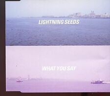Lightning Seeds / What You Say