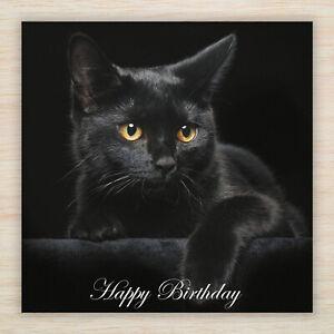 """Cat Birthday Card Mum Nan Gran Sister Daughter Dad """"Black Cat"""" Fast Freepost!"""