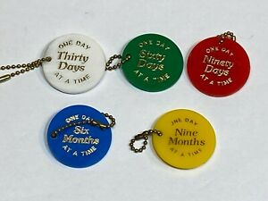 Al-Anon AA 60 Days Plastic Medallion Coin Serenity Recovery Token Chip Keychains