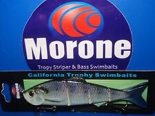 Morone Custom American Shad 6 Inch Bunker Herring swimbait trophy striper bass