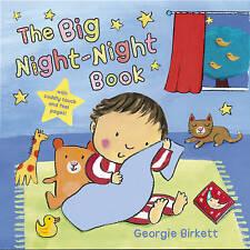 The Big Night-night Book by Georgie Birkett (Board book, 2009)
