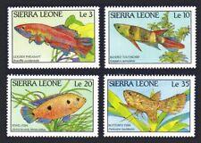Sierra Leone Fish of Sierra Leone 4v MNH SG#1126-1129