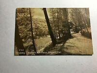 Vintage Postcard RPPC Crocker's New Place Driveway Hillsboro California N9