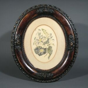 Antique Lithograph Flowers, Morning Glory, Oval Frame