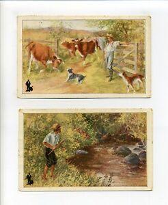 Postmark Taunton MA Lot of 2 Ad postcards for Walk-Over shoes, Keith Co Brockton