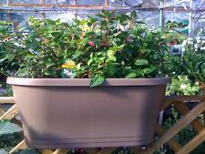Elho 60cm Corsica Flower Bridge Anthracite Planter Balcony Railings Holder Plant