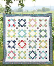 Petal Pushers Quilt Kit Beautiful Moda Fabric by Lauren + Jessi Jung Large Quilt