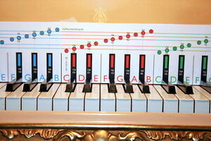 Learn Piano & Keyboard For Beginners Starter book 1 Gift for All Ages 5 -105 yrs