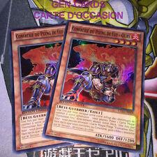 OCCASION Carte Yu Gi Oh CONFRERIE DU POING DE FEU - OURS CT10-FR008 x 2