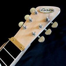 Lapsteel Guitar Kit