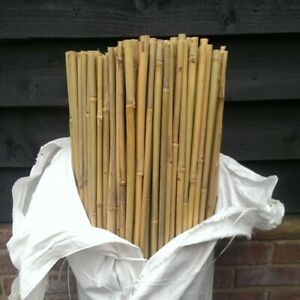 Heavy Duty Thick Quality BAMBOO Garden Canes Strong Plant Support Poles ALL SIZE