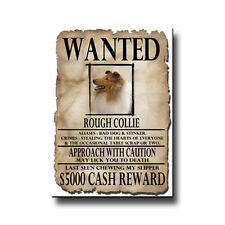 Rough Collie Wanted Poster Fridge Magnet No 1 Dog Funny