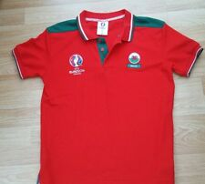 Euro 2016 Wales top age 13