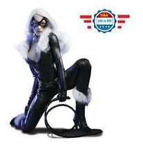VERYCOOL 1/6 Catwoman Cat Lady Head Sculpt Clothing Accessories Kit VCL-1001