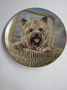 Danbury Mint Yorkshire Terrier Decorative Plate Carry Me Home By Paul Doyle