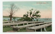 Fish Drying DIGBY Nova Scotia Canada 1907-15 Valentine & Sons Postcard